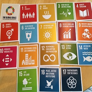 Equalities and the SDGs